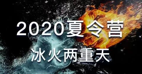 骑大:《2020夏令营 冰火两重天》价值分析,技术发展趋势