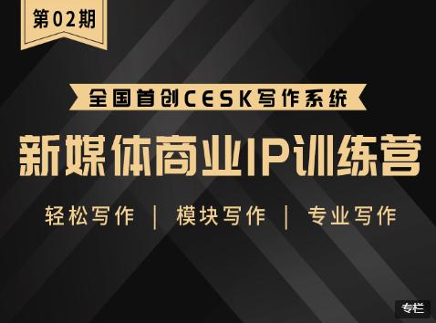 新媒体商业IP训练营第2期,轻松模块专业写作(价值1299元)