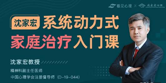 沈家宏:系统动力式家庭治疗入门课,价值599元