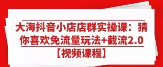 大海抖音小店店群实操课截流2.0(视频+课件)