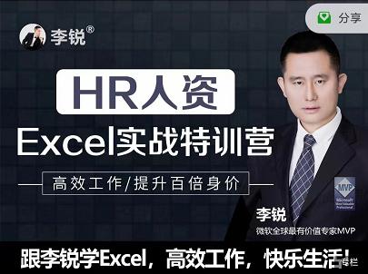 李锐HR人资Excel实战特训营快速提升百倍身价,价值599元