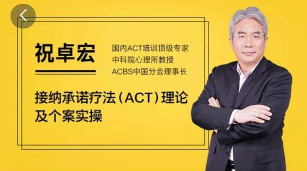 祝卓宏接纳承诺疗法(ACT)理论及个案操作视频课程,帮助来访者增强心理灵活性价值199元